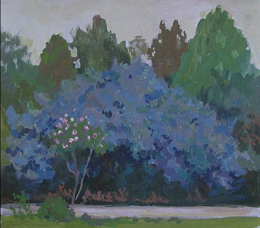 Un Arbuste bleu